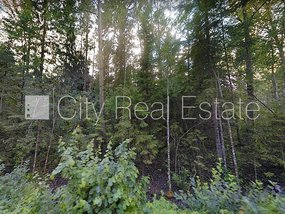 Land for sale in Tukuma district, Lapmezciema parish 417983