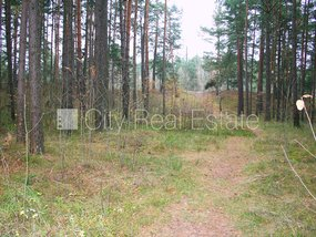 Land for sell in Riga, Mangalsala
