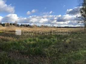 Land for sale in Talsu district, Laucienes parish 421744