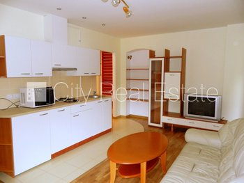 Apartment for rent in Riga, Riga center 431493
