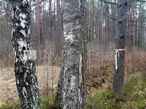Land for sale in Jurmala, Vaivari 423238