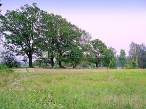 Land for sell in Riga district, Daugmale