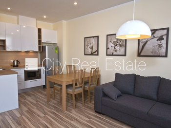 Apartment for rent in Riga, Riga center 422431