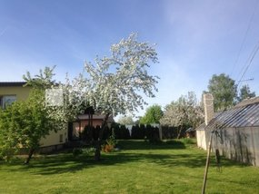 House for sale in Bauskas district, Code 424826