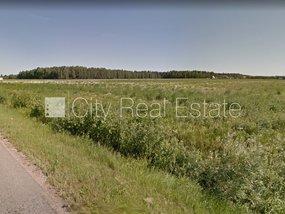 Pārdod zemi Rīgas rajonā, Olainē 508304