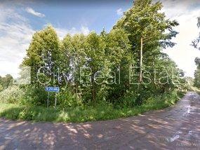 Продают землю в Тукумском районе, Лапмежциемская волость 425177